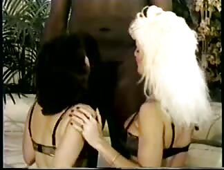 Jan introduces another lady, Denise to ebony dick